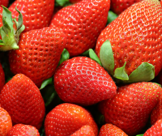 Lekkere Hollandse Aardbeien
